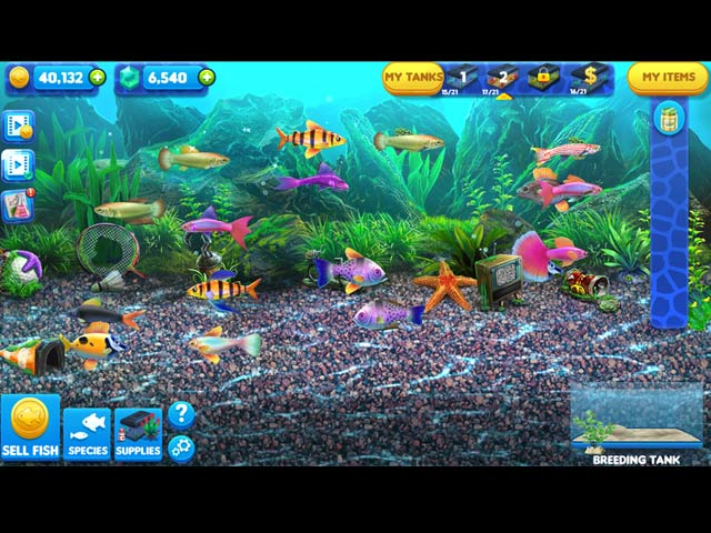 Fish tycoon 2 virtual aquarium full version free download for Fish tycoon games